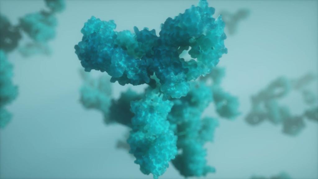 ¿Como funcionan los anticuerpos monoclonales contra el cáncer?